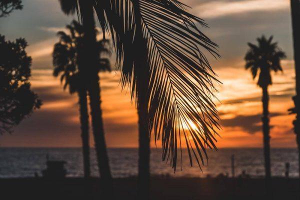 Santa Monica Beach - Sean Curran - Photo Print #3