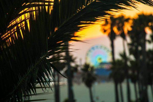 Santa Monica Pier - Sean Curran - Photo Print #6